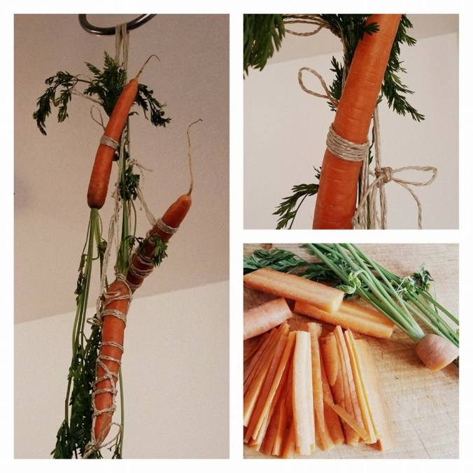 Carrot suspended rope