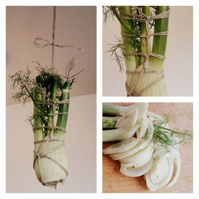 Vegetable suspended rope