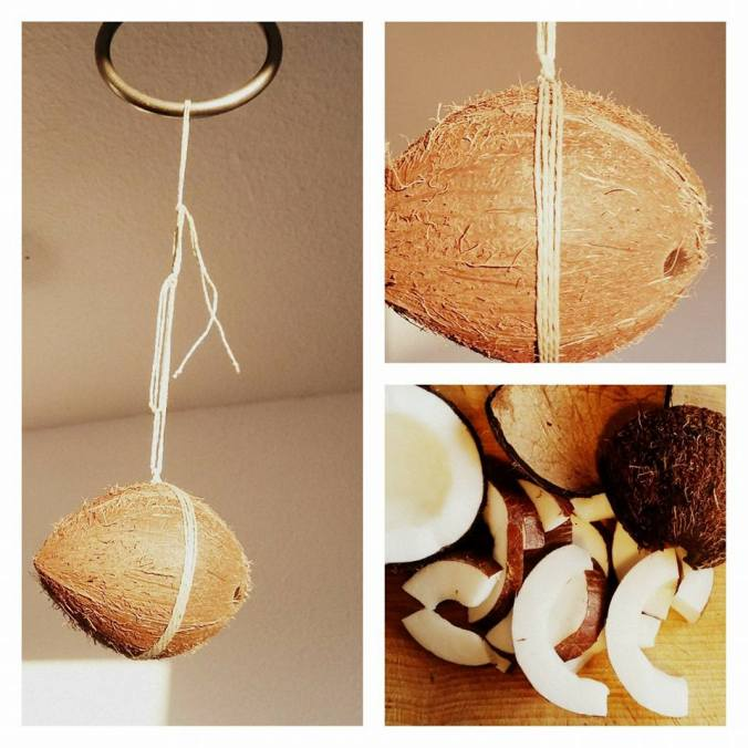 Coconut suspended rope