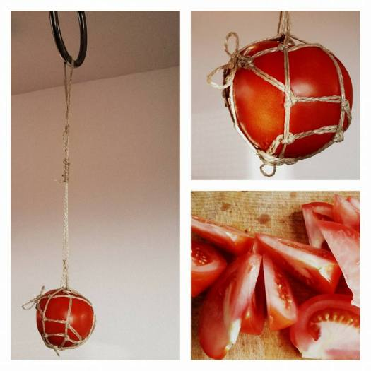 Tomatoe suspended rope