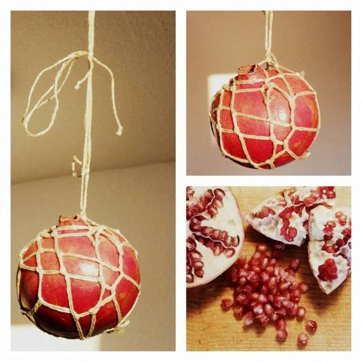 Fruit suspended rope
