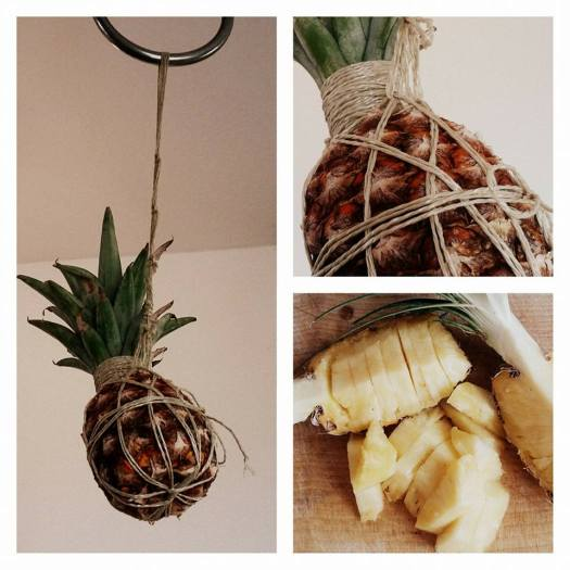 Pineapple suspended rope